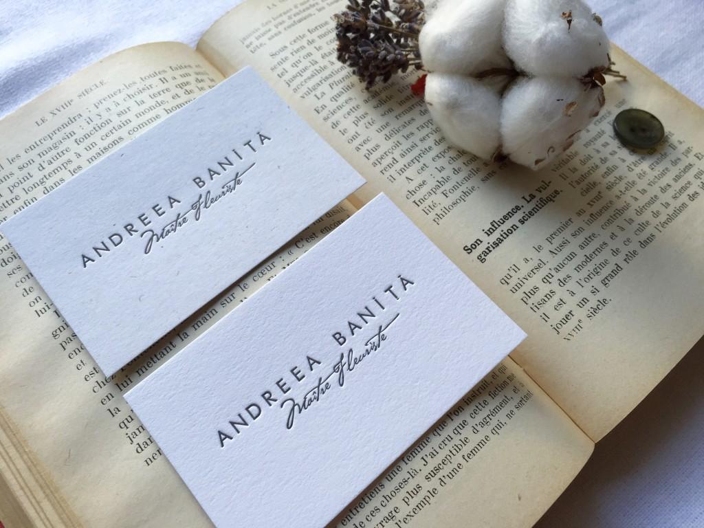 Carti de vizita Andreea Banita